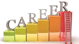 Read more about the article Career Quest!
